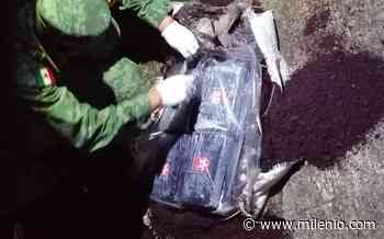 Aseguran más de 700 kilos de cocaína en Huixtla, Chiapas - Milenio