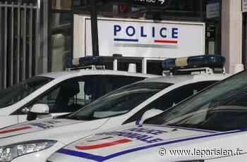 Veneux-les-Sablons : l'octogénaire unijambiste poignardé par sa femme - Le Parisien