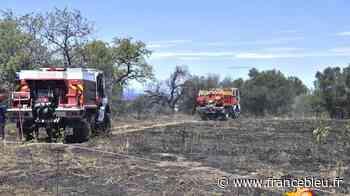 Trois hectares de broussailles brûlés entre Vauvert et Gallician - France Bleu
