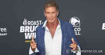 How David Hasselhoff ended up broke after a messy divorce to ex Pamela Bach - Mirror Online