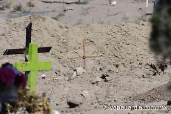 A la fosa común bebé abandonado en la colonia Bellavista de Saltillo - Vanguardia MX