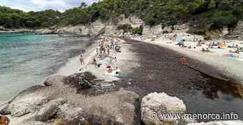 El arenal de Cala Mitjana, dividido por el agua dulce - Menorca - Es diari