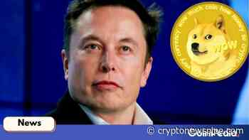 Dogecoin Price Up 15 Percent As Elon Musk Mentions DOGE as Crypto is Inevitable - Crypto News Pipe