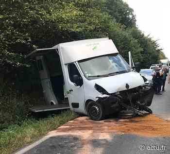 Elbeuf. Un camion transportant un cheval se retrouve dans le fossé - actu.fr