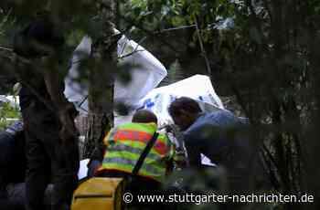 Flugzeugabsturz in Rheinstetten - Keine Hinweise auf medizinische Ursache - Stuttgarter Nachrichten