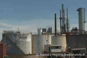 """VIDÉO. Haubourdin : la colère des salariés de Cargill, """"indispensables"""" pendant la crise et menacés de licenci - France 3 Régions"""