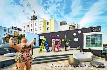 Bikini-Art-Museum in Bad Rappenau - Nackte Tatsachen über ein kurzes Stück Stoff - Stuttgarter Zeitung