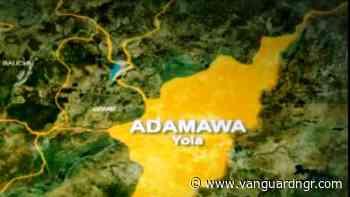 2,000 Boko Haram victims in Adamawa get farm tools - Vanguard