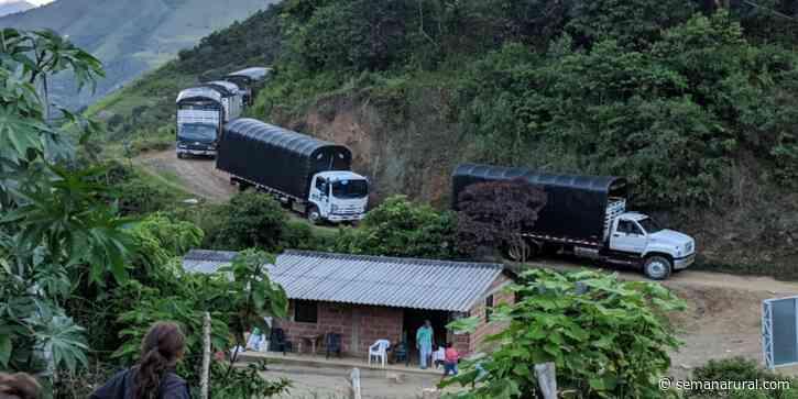 Excombatientes salen de Ituango a Mutatá por inseguridad - Semana Rural