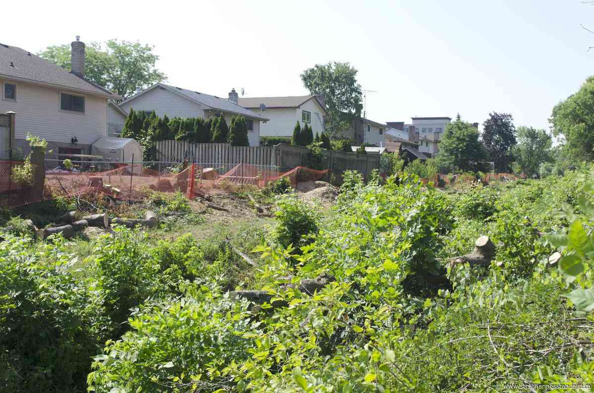 Beamsville residents disappointed to see trees removed by town - StCatharinesStandard.ca