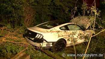 Zirndorf: Mustang durchbricht Gartenzaun - Nordbayern.de
