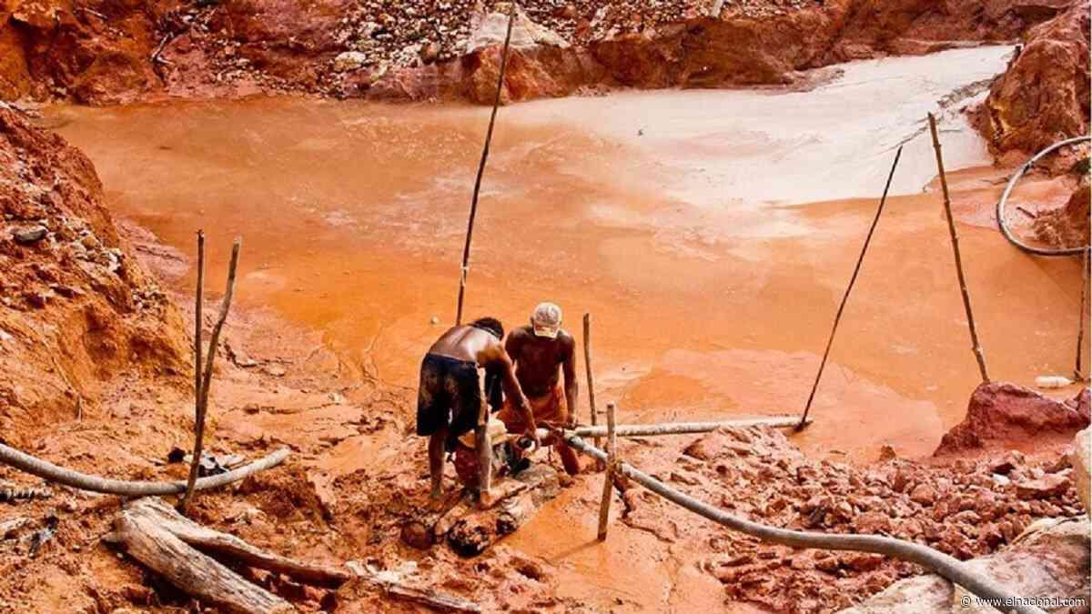 Líderes indígenas de Maripa denunciaron minería ilegal en el río Caura - El Nacional