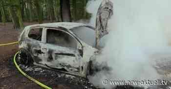 Pkw-Brand im Waldgebiet Wolfhagen in Langenfeld – Fahrzeug vollständig ausgebrannt - Polizei sucht Zeugen - nrw-aktuell.tv