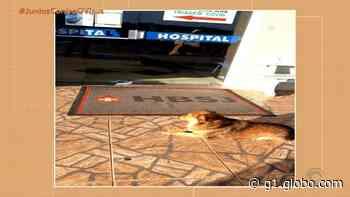Cachorro espera dono sair de cirurgia na porta de hospital em Sananduva - G1