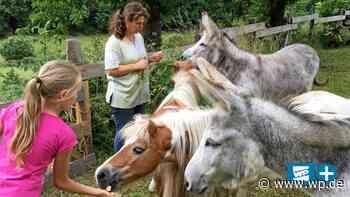 Ferientipp Medebach: Erlebnis-Scheune mit vielen Tieren - Westfalenpost