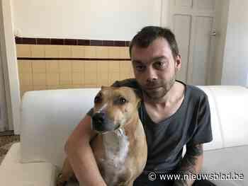 """Man ontsnapt aan zware brand dankzij zijn hond: """"Zonder Mia was ik er wellicht niet meer"""""""