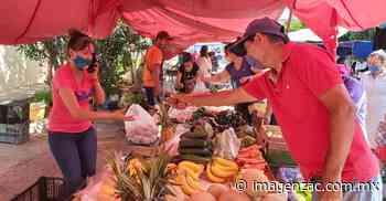 Reportan bajas ventas en el tianguis de Jalpa - Imagen de Zacatecas, el periódico de los zacatecanos