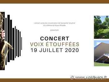 Concert Voix étouffée dimanche 19 juillet 2020 - Unidivers