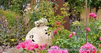 Der Traumgarten von Familie Gabriel aus Illingen - Saarbrücker Zeitung
