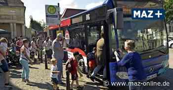 Tourismus-Buslinie 823 zwischen Oranienburg und Kremmen: Neustart glückt mit Bravour - Märkische Allgemeine Zeitung