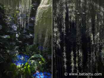 Rainforest, une installation poétique à Chaumont-sur-Loire - Batiactu
