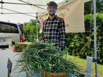 Vankleek Hill Farmers' Market welcoming new vendors, shoppers at its new location - The Review Newspaper