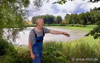 Wasserknappheit: Sorgen um den Wehrsee in Falkenhagen - Märkische Onlinezeitung