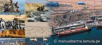 ¿Embarque de concentrado de minerales en la Reserva de Paracas? - La Mula