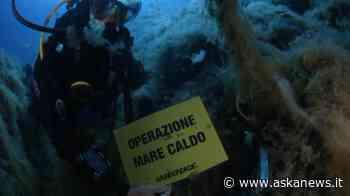 Chiari impatti del cambiamento climatico sui mari italiani - askanews