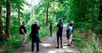 Wälder in Usingen: Eine Chance zur Erholung geben - Usinger Anzeiger