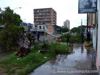 Diario El Periodiquito - Lluvia dejó secuela en el centro de Maracay - El Periodiquito