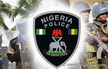 Adamawa CP Parades 33 Kidnappers, 10 Robbery Suspects - THISDAY Newspapers