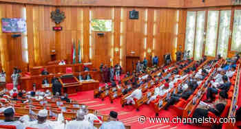 Senate Asks Buhari To Send Soldiers After Bandits Taking Refuge In Jigawa - Channels Television