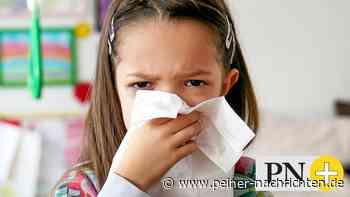 Peine: Kinder mit leichter Erkältung dürfen wieder in Kita - Peiner Nachrichten