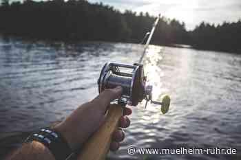 Fischerprüfung am 3. und 4. November 2020