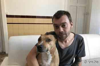 Detlev (30) ontsnapt aan zware nachtelijke brand in Koekelare dankzij heldhaftige hond - Krant van Westvlaanderen
