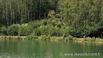 Wingles: au cœur du parc Cabiddu, une cabane fait tourner les têtes - La Voix du Nord