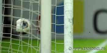 Neu Wulmstorf wappnet sich für die Saison - Fußball - Tageblatt-online