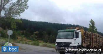 Alcalde de Purranque irá a la Justicia acusando incumplimiento de forestales con vecinos de Hueyusca - BioBioChile