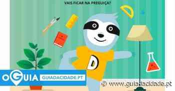 Dominguinhos Online Matosinhos: Papagaios ao Vento!!! - Guia da Cidade