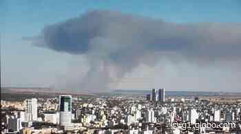 Mais de 105 hectares de canavial são queimados durante incêndio em Uberlândia - G1