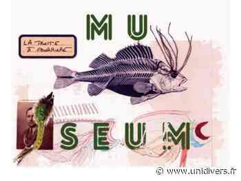 Théâtre en plein air « Museum » jeudi 23 juillet 2020 - Unidivers