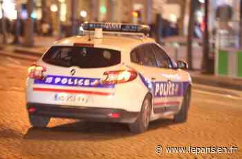 Villepinte : un policier fait feu contre le chauffard qui tente d'écraser son collègue - Le Parisien