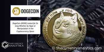 DogeCoin (DOGE) Lasted for So long Whether by Hype or Manipulation in the Cryptocurrency Space - The Cryptocurrency Analytics