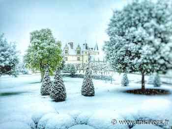Noël, rêves d'enfance au château Royal d'Amboise samedi 5 décembre 2020 - Unidivers