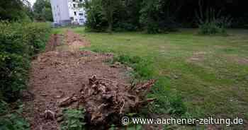 Erweiterung Zentralfriedhof in Baesweiler : Fläche nicht als Obstwiese klassifiziert - Aachener Zeitung