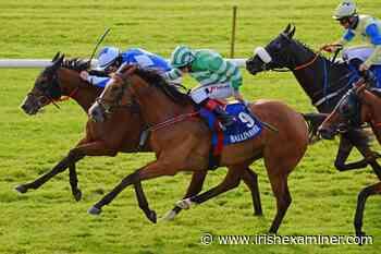 Celtic Crown redeems promise of Killarney run - Irish Examiner
