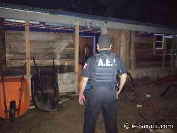 me-consulta.com   En cateo en San Gabriel Mixtepec, la FGEO asegura droga y detiene a probable narcomenudista - e-oaxaca Periódico Digital de Oaxaca
