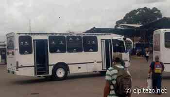 Autoridades obligan a renunciar al director de transporte de Ocumare del Tuy - El Pitazo