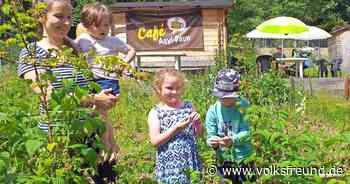 Grundstück, das Café Asyl Daun nutzen darf, wird Ort der Begegnung - Trierischer Volksfreund